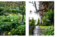 GARDENS ILLUSTRATED, JAN 2017